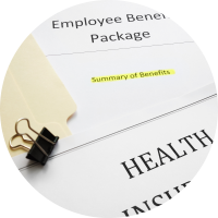 Employer Offered Coverage